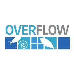 Logo for Overflow Biz, Inc.